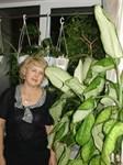 Соколова Нина Геннадьевна