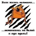 Агафонова Светлана Николаевна
