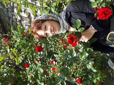 Черткова Наталья Робертовна