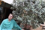 Нурмагомедова Сиядат Сайгидовна
